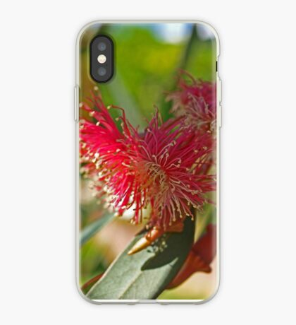 Red Eucalypt iPhone Case