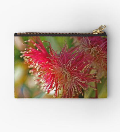 Red Eucalypt Studio Pouch