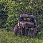 Back In a Field by Richard Bean
