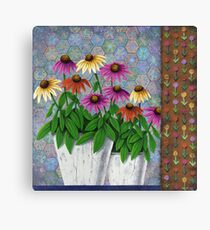 Coneflowers in Clay Pots Canvas Print