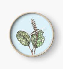 Salix Reticulata Clock