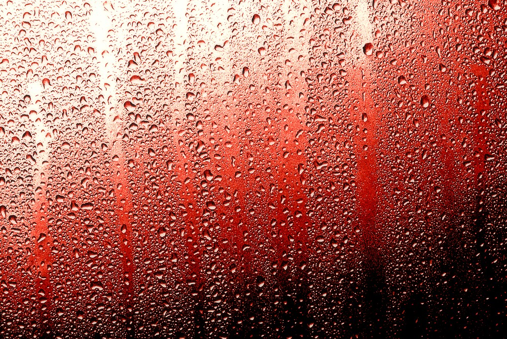 Red Rain by Shannon Byous Ruddy