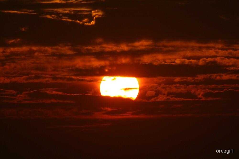 Mexican Sun by orcagirl