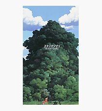 Trees Studio Ghibli Photographic Print