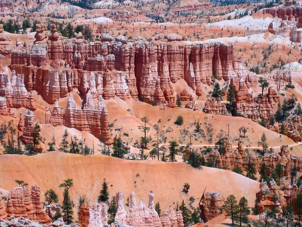 The Beauty of Bryce Canyon National Park by Laura Puglia