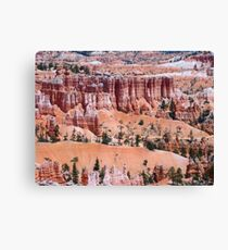 The Beauty of Bryce Canyon National Park Canvas Print