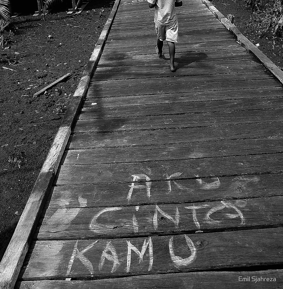 I love you by Emil Sjahreza