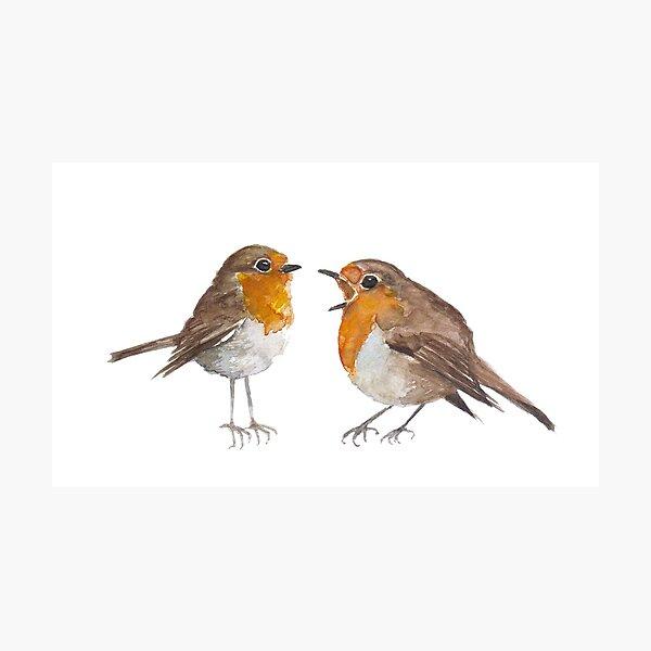 Robin & Marian Photographic Print