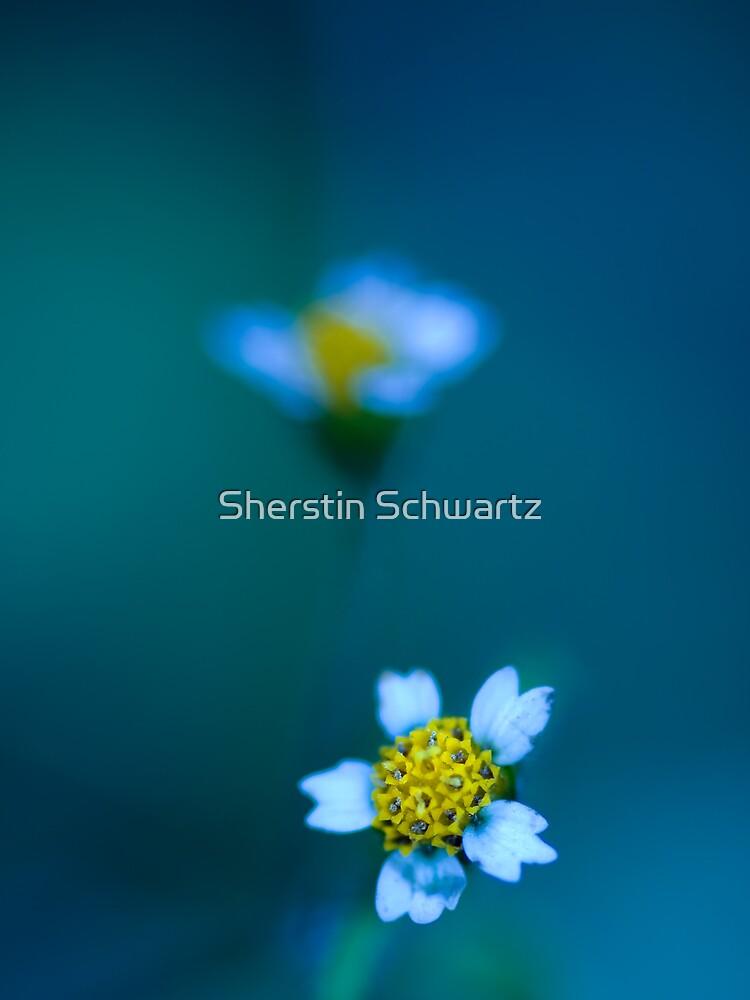 Bleu. by Sherstin Schwartz