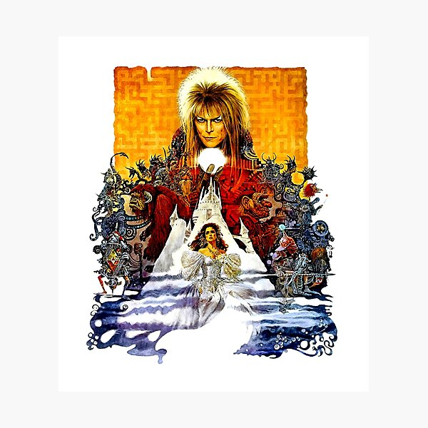 Labyrinth Poster Photographic Print