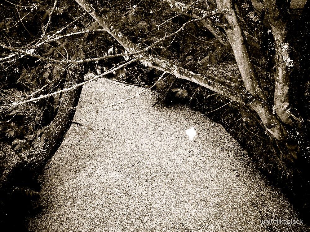 flower covered river by whitelikeblack