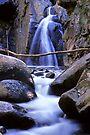 Rubicon Falls by Travis Easton