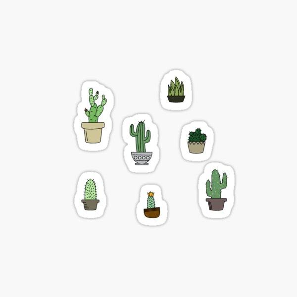 succulent pack Sticker