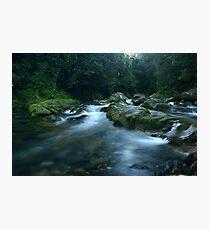 Williams River, Barrington Tops, NSW, Australia Photographic Print