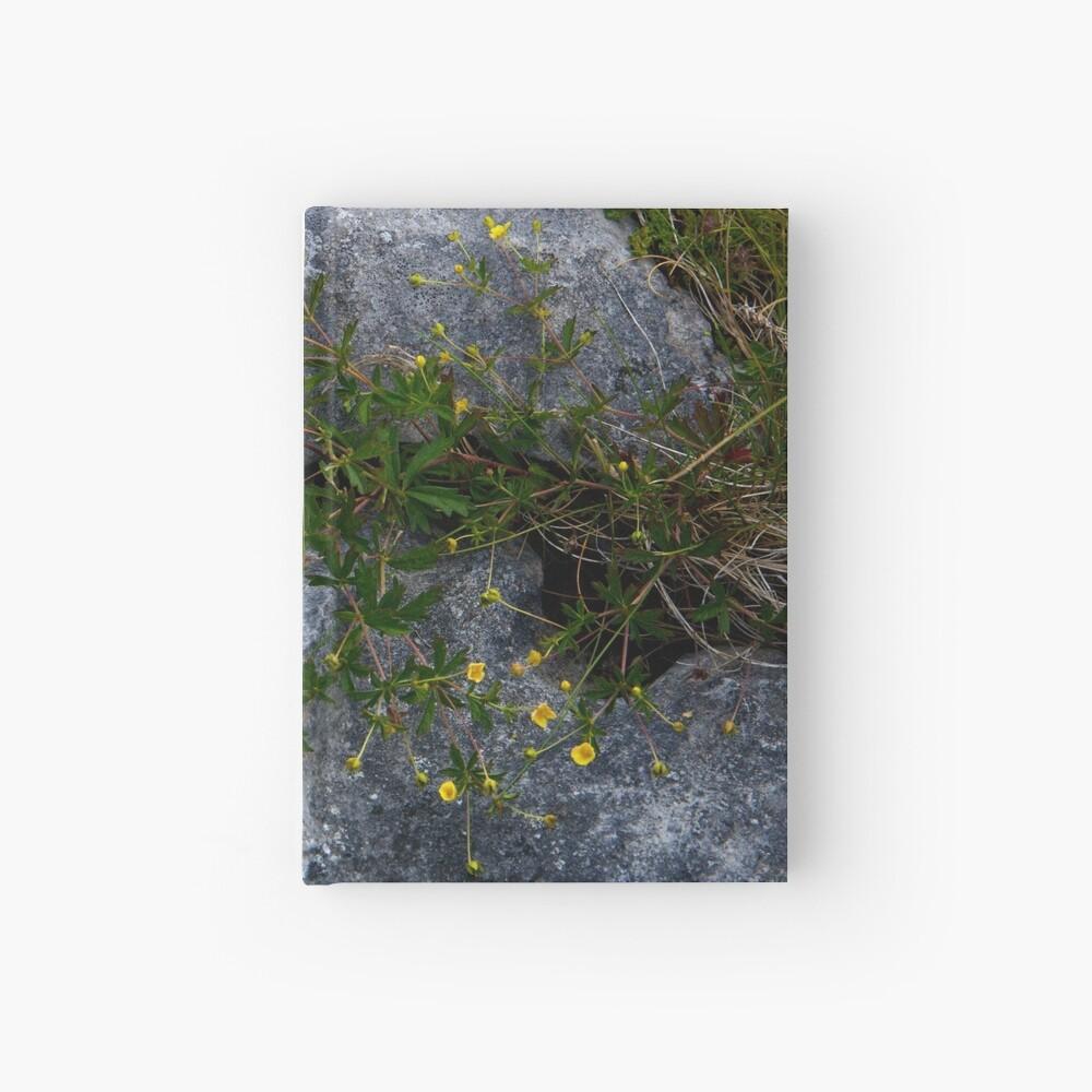 Tormentil, Dun Aengus, Inishmore, Aran Islands Hardcover Journal