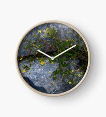 Tormentil, Dun Aengus, Inishmore, Aran Islands Clock