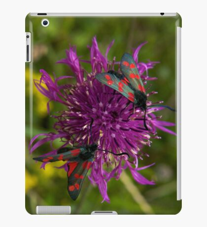 """Greater Knapweed with """"6-spot Burnet"""" Moths iPad Case/Skin"""
