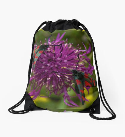 "Greater Knapweed with ""6-spot Burnet"" Moths Drawstring Bag"