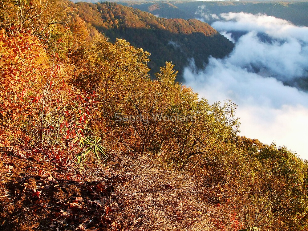 Above the Clouds by Sandy Woolard