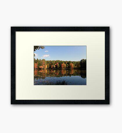 New Hampshire Foliage 2008 #12 Framed Print