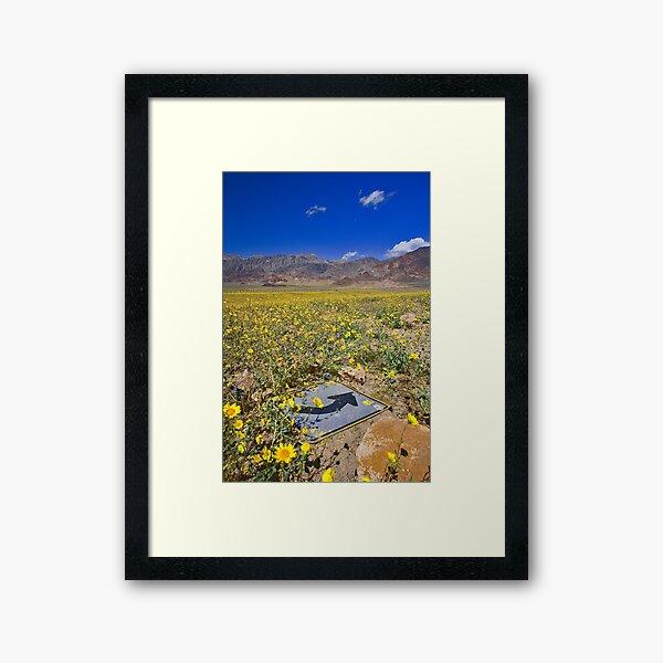 Death Valley Super Bloom This Way Framed Art Print
