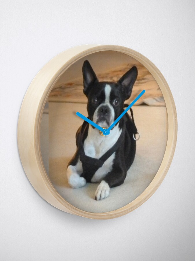 Alternate view of Yoda. Boston Terrier Clock