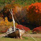 Land!  Ho! by Debbie Stobbart