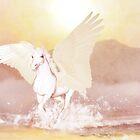 Pegasus  by Valerie Anne Kelly
