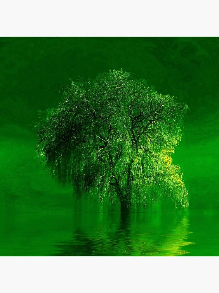 Terre verde  by valzart