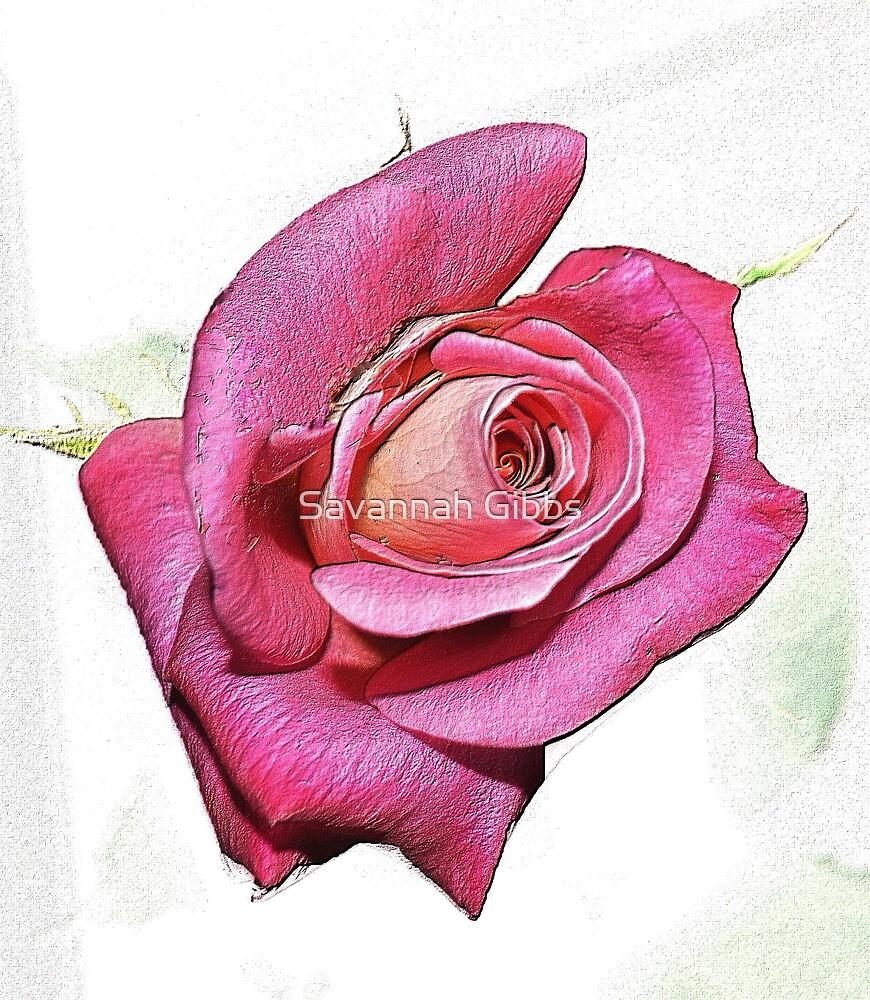 Rose by Savannah Gibbs
