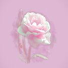 Pink Peony in Oils by Catherine Hamilton-Veal  ©