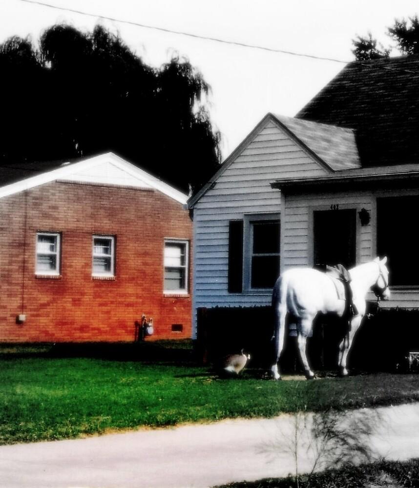 Horse by Marie Monroe