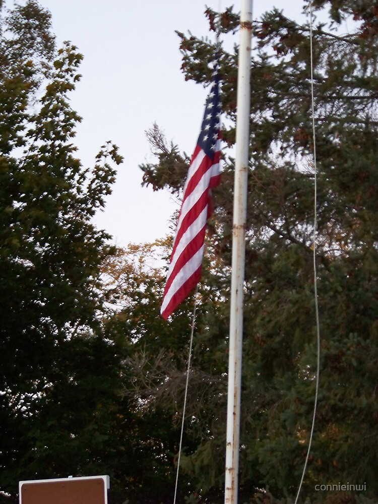 Flag From Camp by connieinwi
