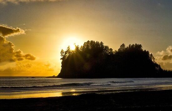 Pacific Sunset - Olympic Peninsula, Washington by Kathy Weaver
