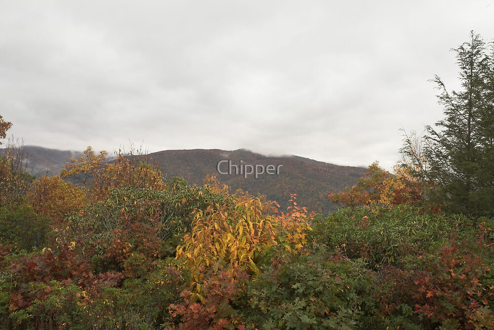 Cold Mountain by Chipper