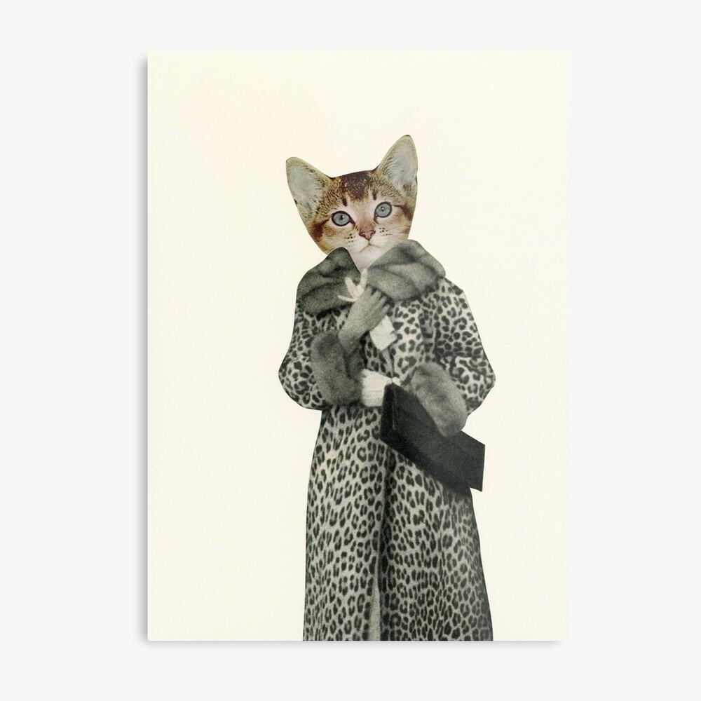 Kätzchen gekleidet als Katze Metallbild