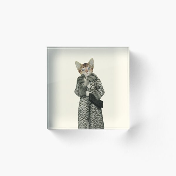 Kitten Dressed as Cat Acrylic Block