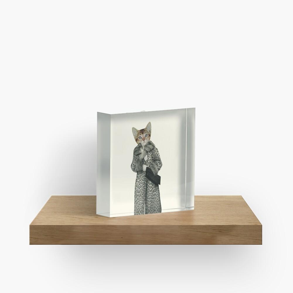 Kätzchen gekleidet als Katze Acrylblock