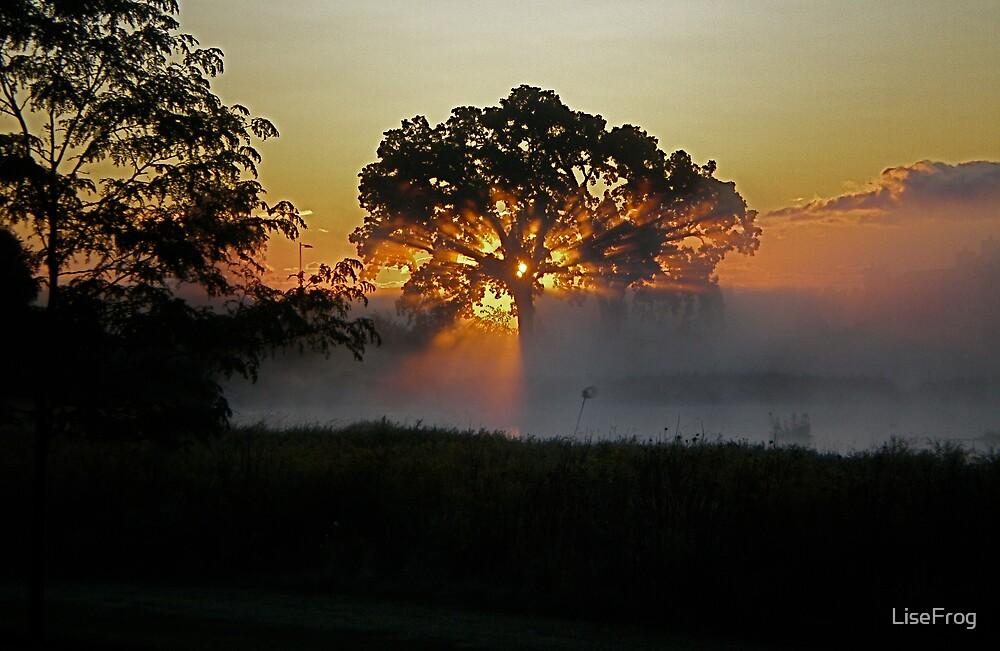 Sunrise Over the Marsh by LiseFrog