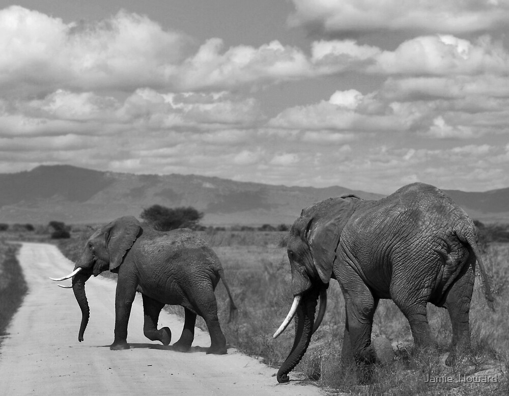 The Long Road Ahead by Jamie  Howard