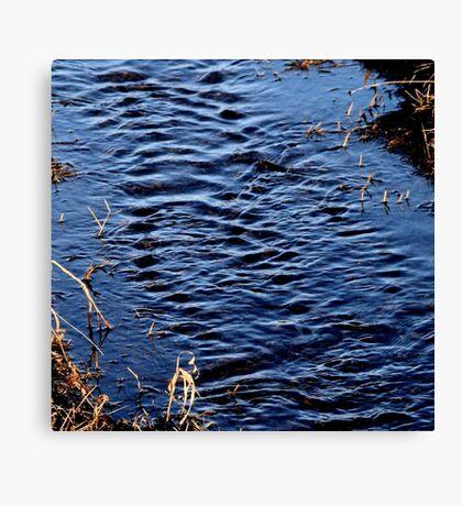 Babbling Brook Canvas Print