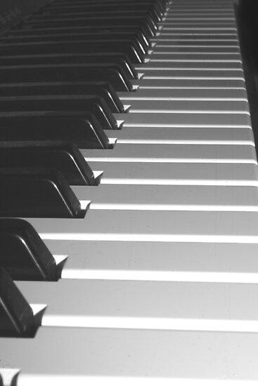 Music Keyboard by Stephen Thomas