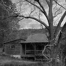 Abandoned House by EplusC Studio