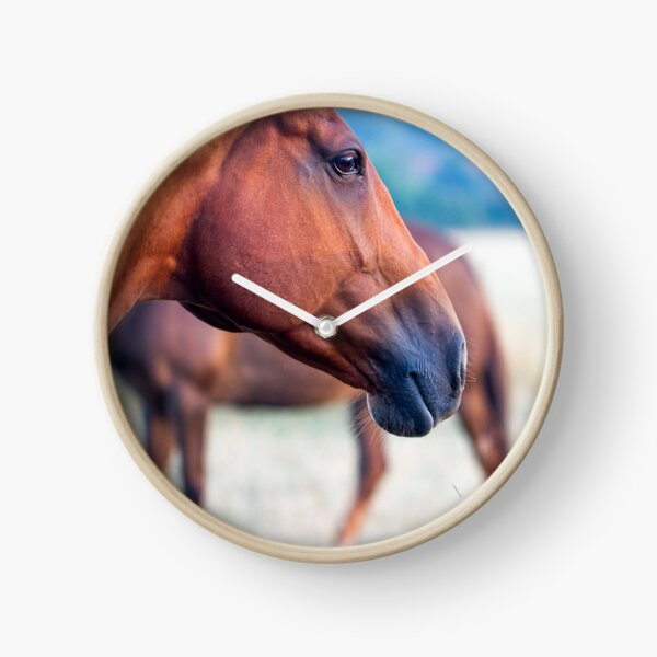 Horse Thoughts Clock