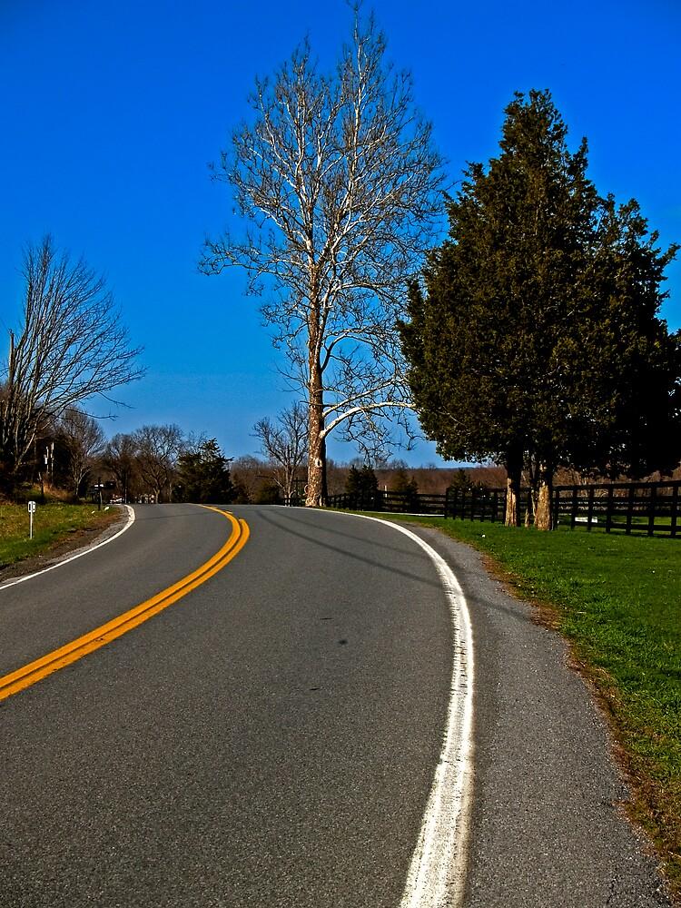 A Curve to Somewhere. by David Platt-Chance