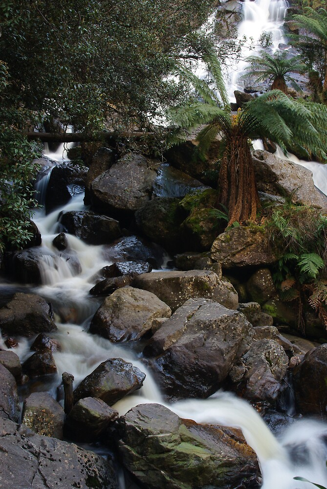 St. Columba's Falls by Greg Eyre