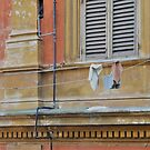 Hanging Out.......................Rome by Fara