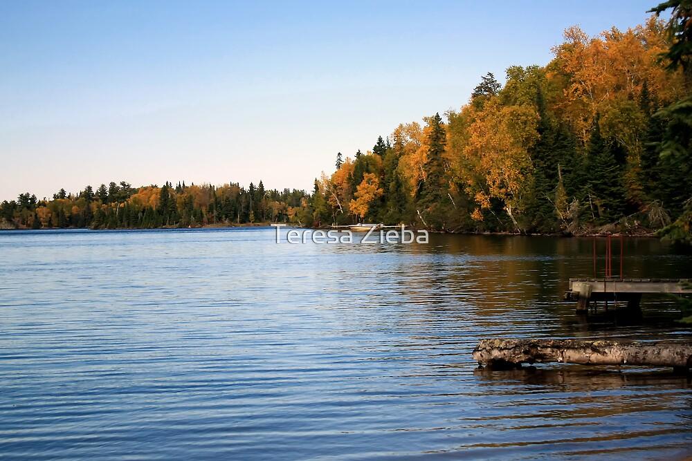 Falcon Lake in Fall by Teresa Zieba