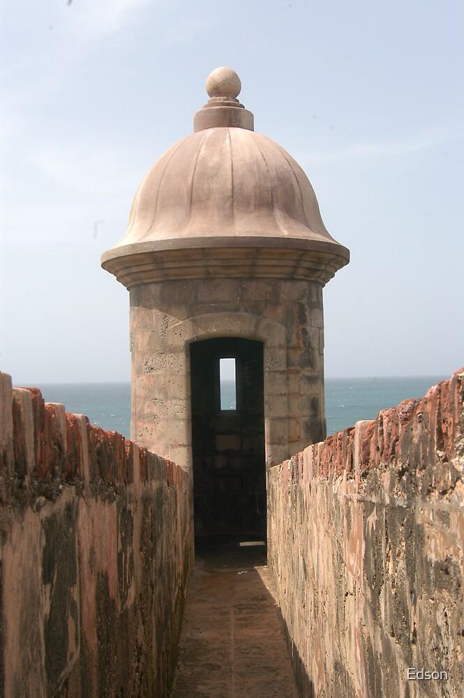 San Juan Fort by Edson