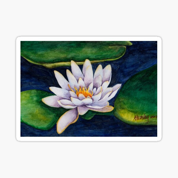 Water lilies, water colours, christmas gift, floral designs Sticker